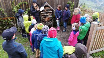 Permalink auf:Das Insektenhotel in unserem Schulgarten wird neu befüllt